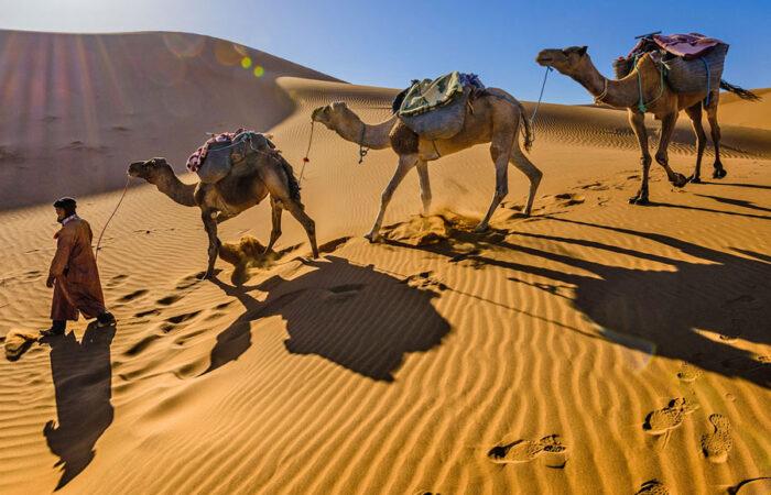 desert travel link morocco