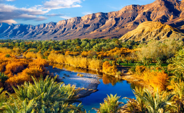 draa valley travel link morocco